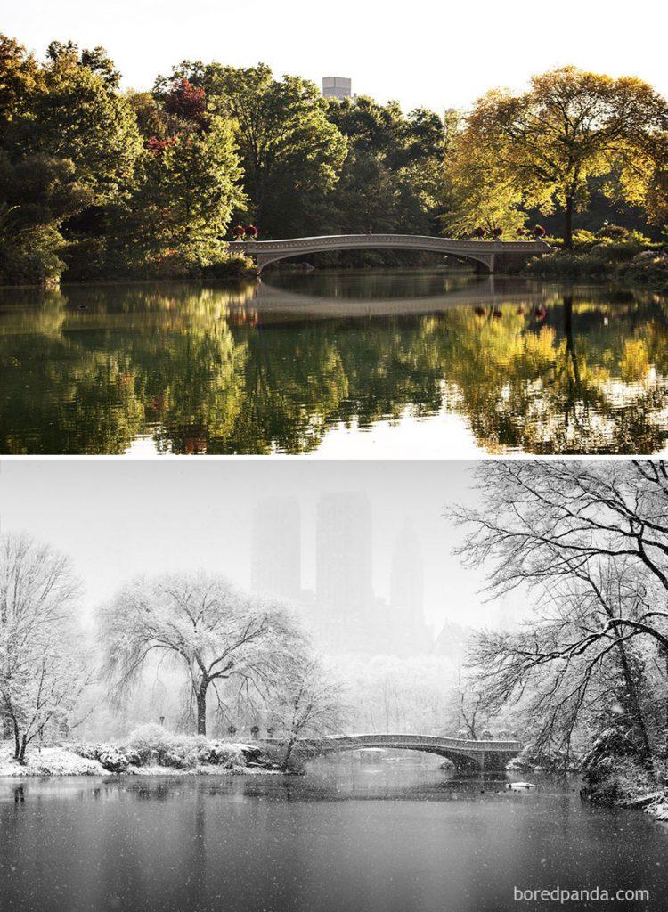 Lặng ngắm bộ ảnh đẹp đẽ đến ma mị về quá trình chuyển giao của mùa đông khắp nơi trên thế giới - Ảnh 21.