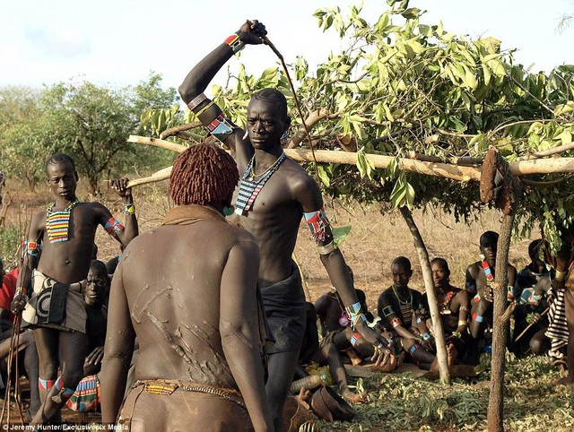 Lạ lùng bộ tộc đàn ông phải khỏa thân nhảy qua lưng bò để... lấy được vợ - phunuduongthoi.vn 5